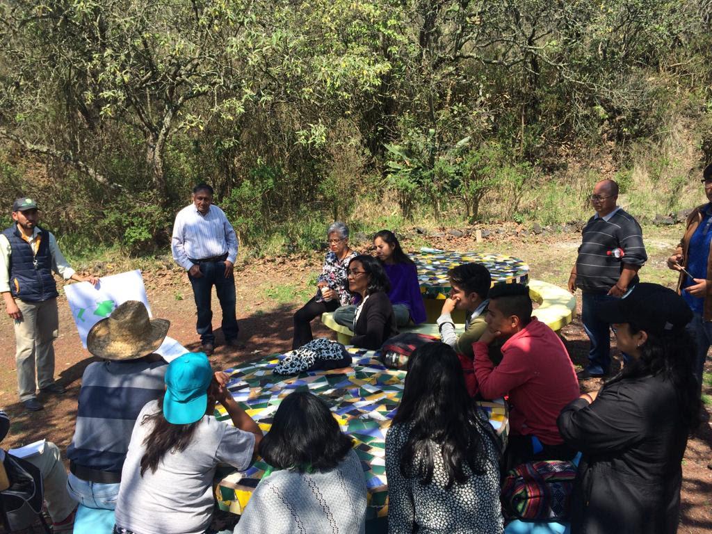 Fomentan empleo para realizar actividades de conservación ecológica