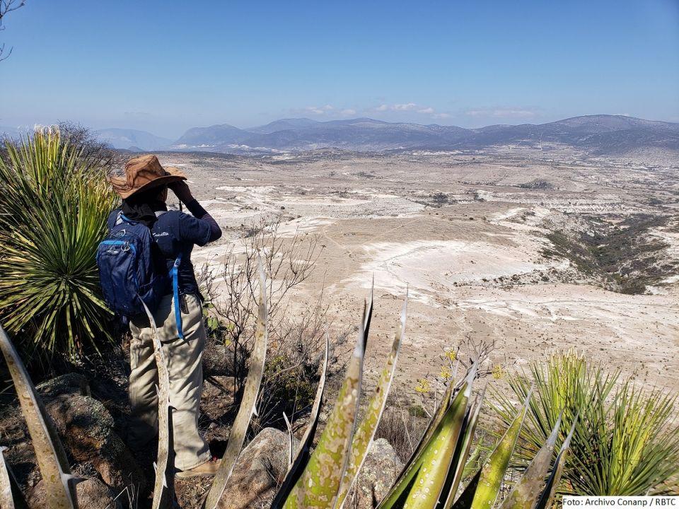 Biósfera Tehuacán