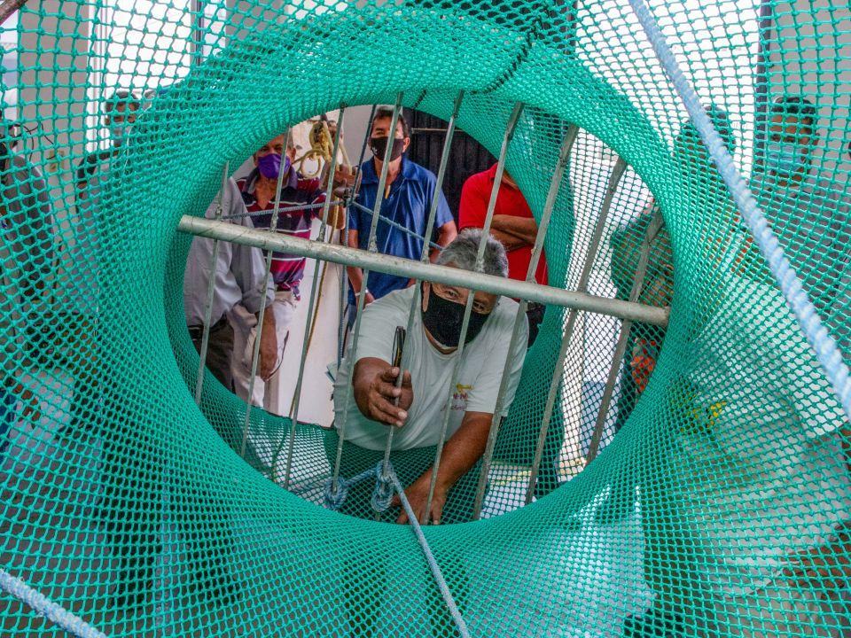 Excluidores de Tortugas Marinas