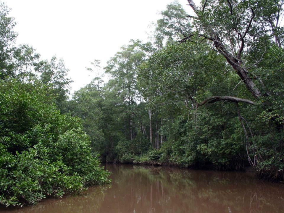 río Tárcoles