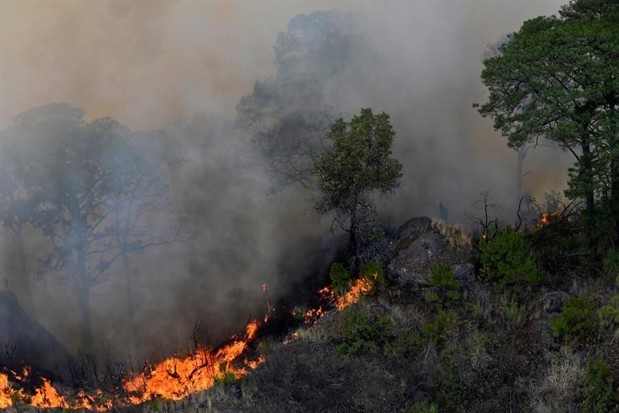incendio forestal en Tepoztlán